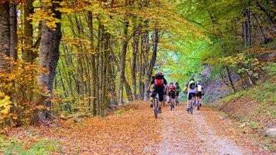Photo of Kako izbrati popolno treking kolo?